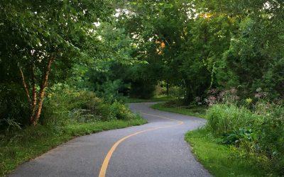 Kinsmen Trail