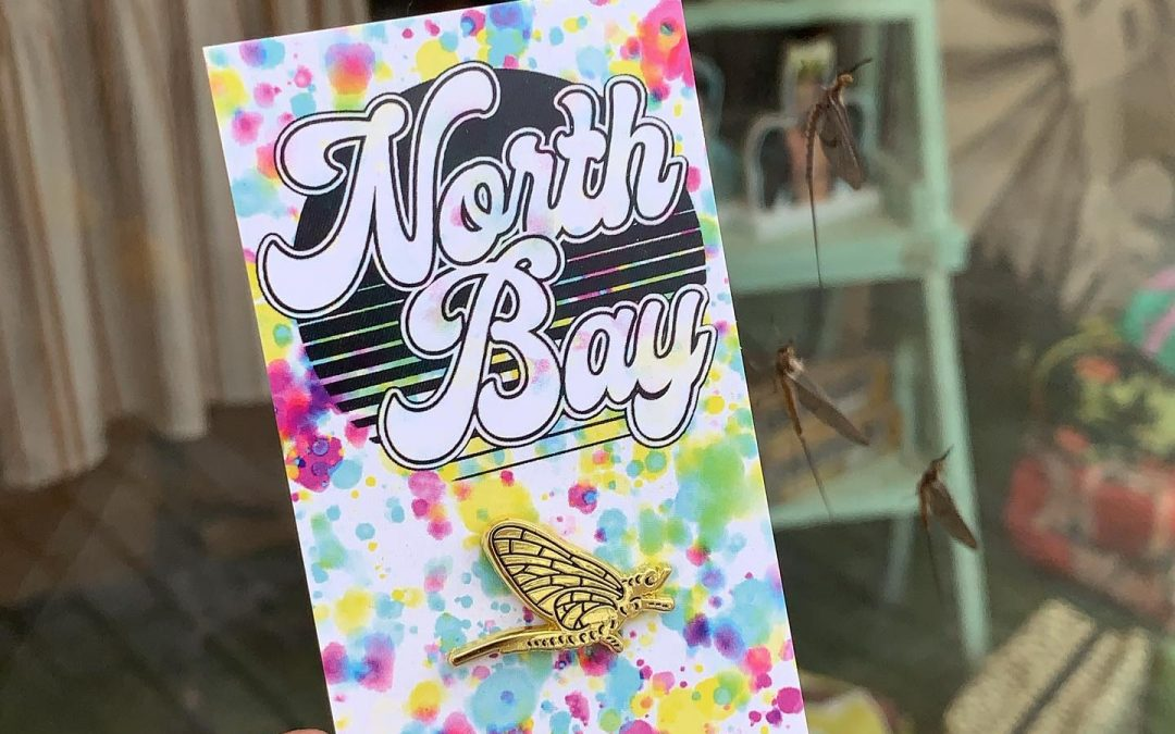 10 Fun Things to do in North Bay